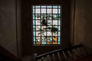 vitro_ceiling